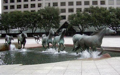 Mustangs, Las Colinas, Texas
